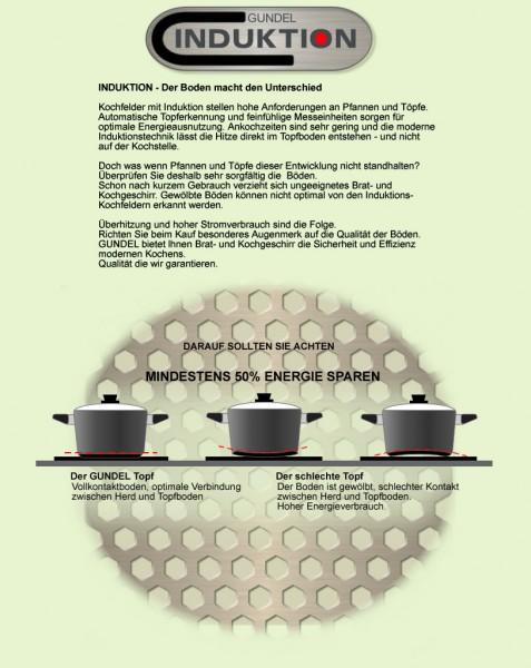 original gundel 28 cm induktion kochtopf. Black Bedroom Furniture Sets. Home Design Ideas